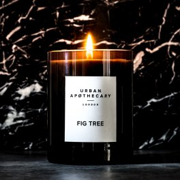 fig-tree-scented-candle